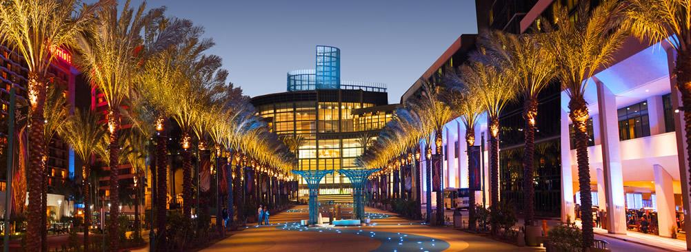 Anaheim 2
